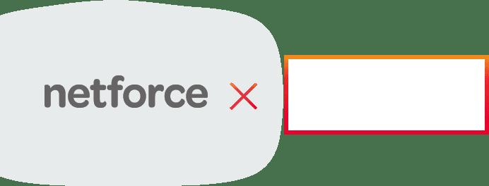 netforce ×